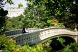 sam-tess-central-park-surprise-proposal-16