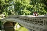 sam-tess-central-park-surprise-proposal-23