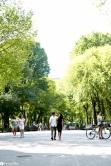 sam-tess-central-park-surprise-proposal-66