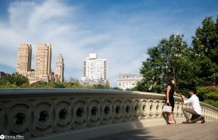sam-tess-central-park-surprise-proposal-7