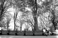 sam-tess-central-park-surprise-proposal-73